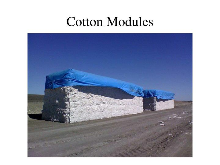Cotton Modules