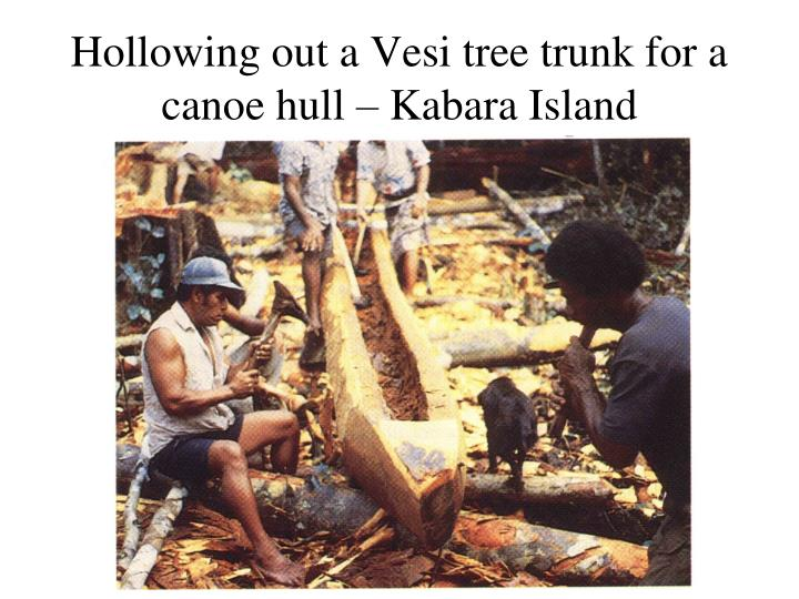 Hollowing out a Vesi tree trunk for a canoe hull – Kabara Island
