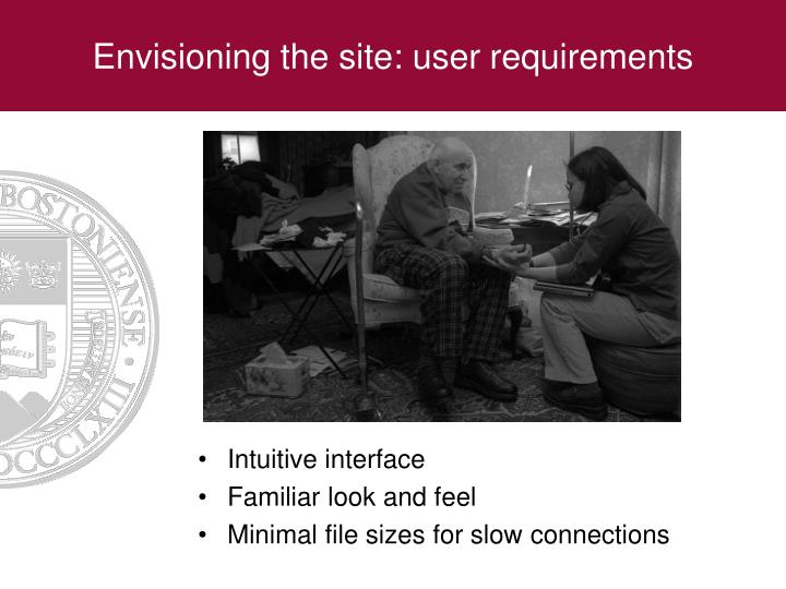 Envisioning the site: user requirements