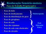 reeduca o sens rio motora fases do trabalho proprioceptivo