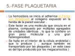 5 fase plaquetaria
