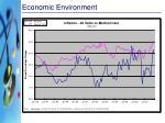 economic environment1