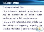 security issues13