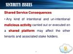 security issues3