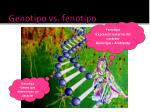 genotipo vs fenotipo1
