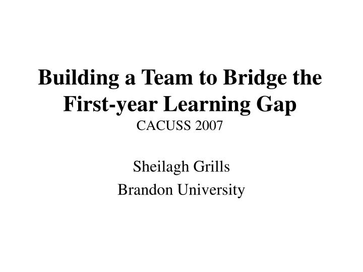building a team to bridge the first year learning gap cacuss 2007 n.
