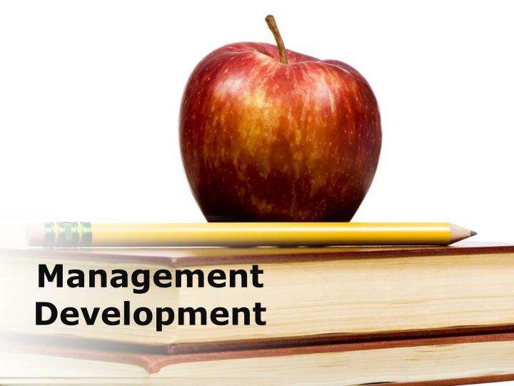 management development n.
