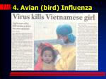 4 avian bird influenza