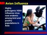 avian influenza1