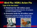 bird flu h5n1 avian flu
