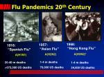 flu pandemics 20 th century