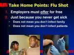 take home points flu shot