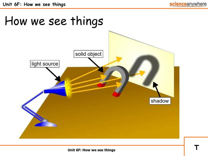unit 6f how we see things n.