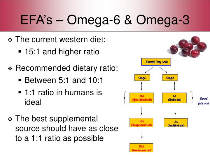 EFA's – Omega-6 & Omega-3