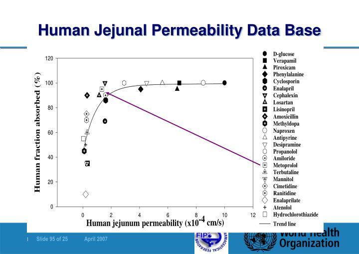 Human Jejunal Permeability Data Base