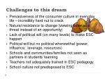 challenges to this dream