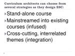 curriculum architects can choose from several strategies as they design esc