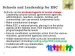 schools and leadership for esc