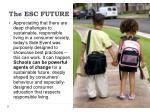 the esc future