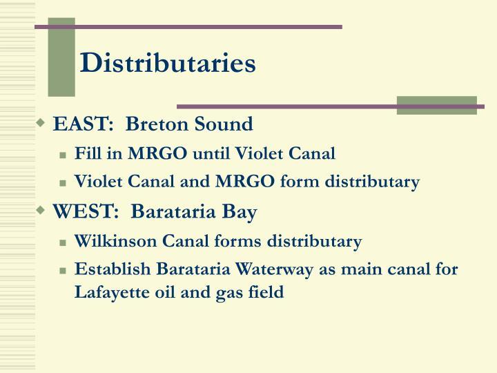 Distributaries