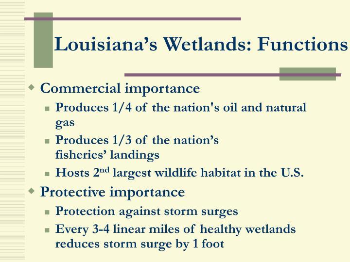Louisiana's Wetlands: Functions