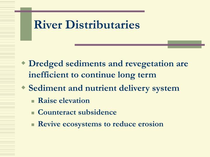 River Distributaries