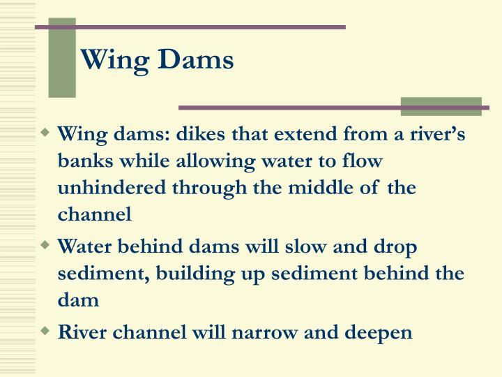 Wing Dams