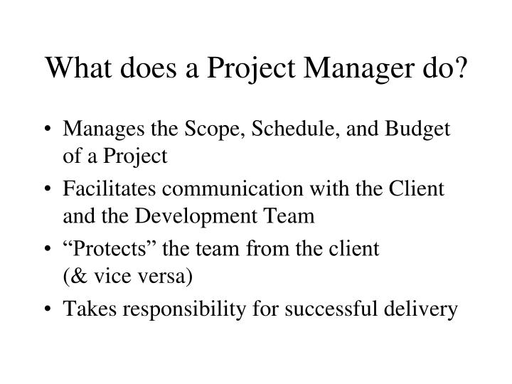 What does a Project Manager do?