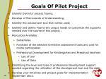 goals of pilot project