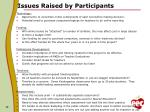 issues raised by participants