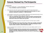 issues raised by participants4