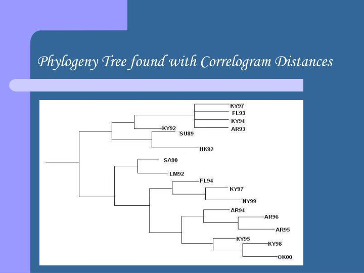 Phylogeny Tree found with Correlogram Distances