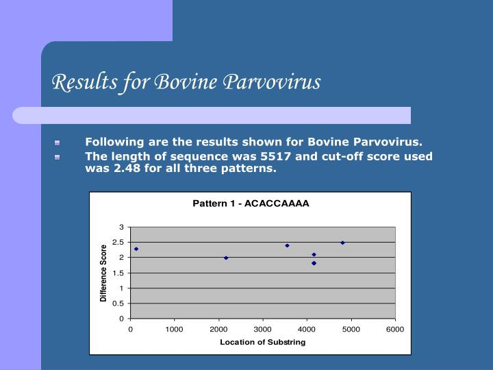 Results for Bovine Parvovirus