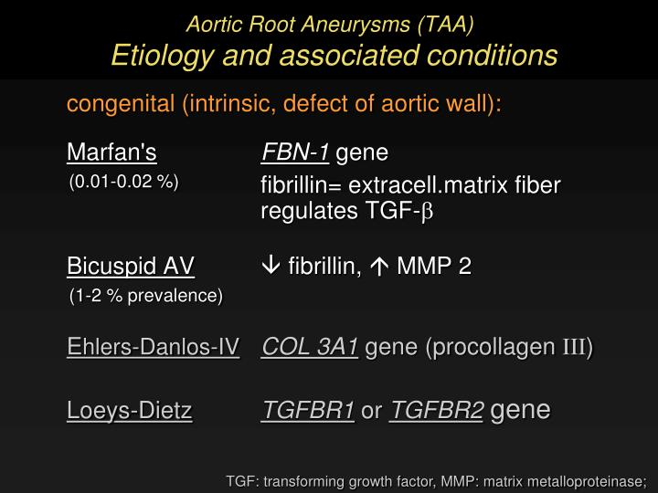 Aortic Root Aneurysms (TAA)