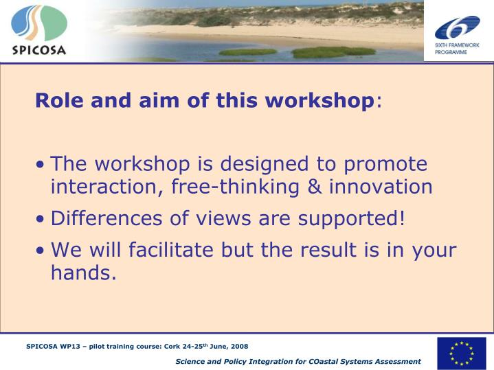Role and aim of this workshop