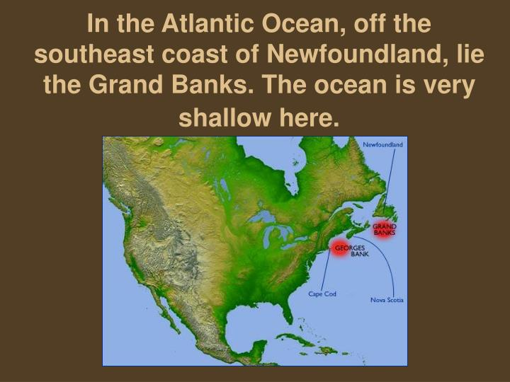 In the Atlantic Ocean, off the southeast coast of Newfoundland, lie the Grand Banks. The ocean is very shallow here.