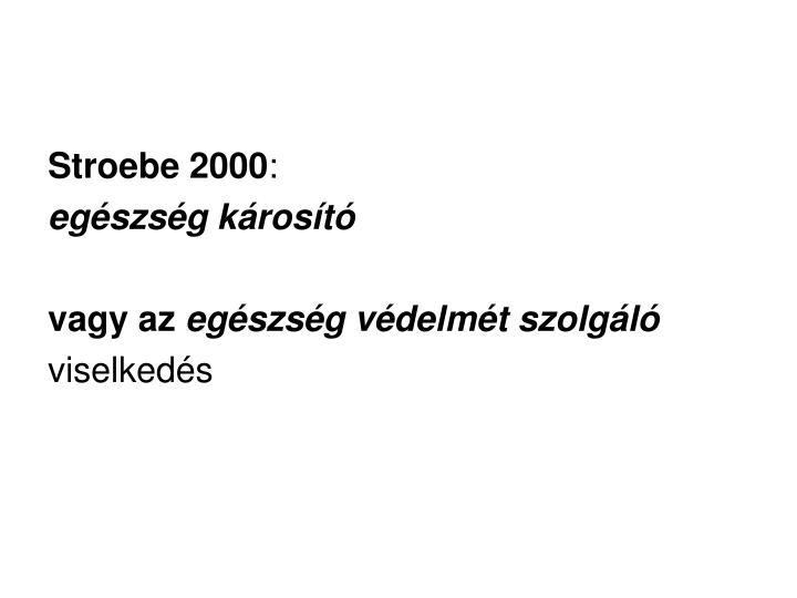 Stroebe 2000