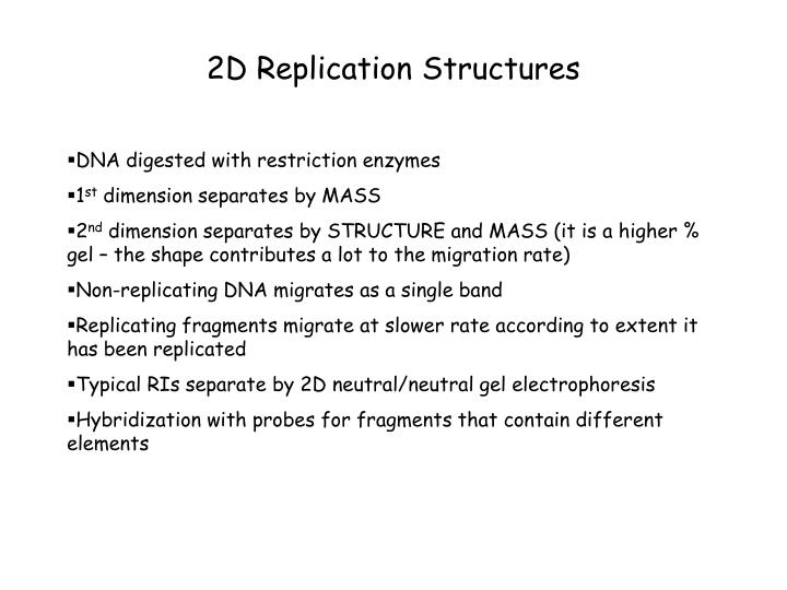 2D Replication Structures