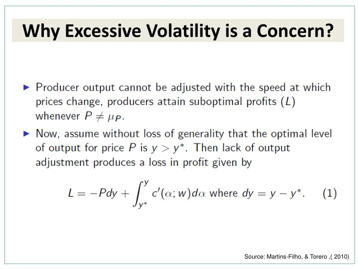 Why Excessive Volatility is a Concern?