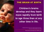 the brain at birth