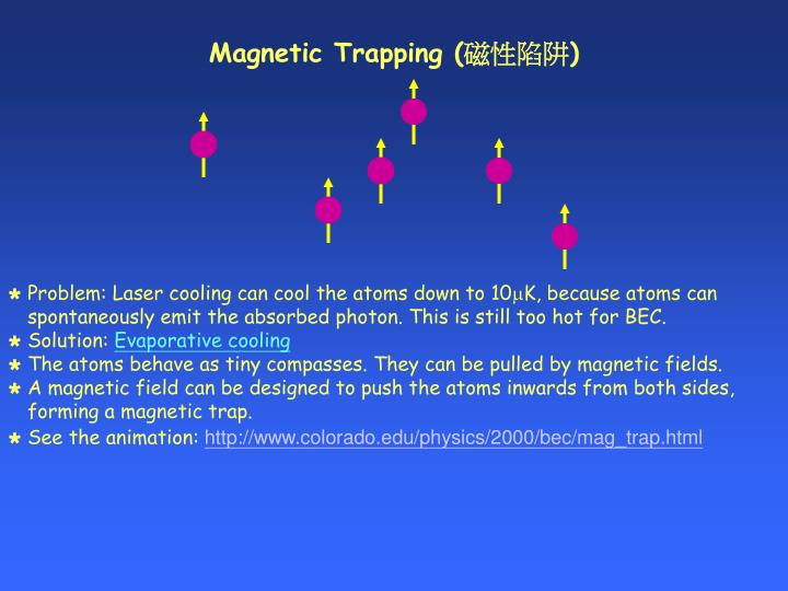 Magnetic Trapping (