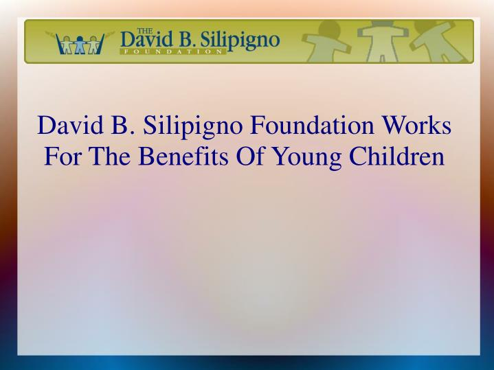 David b silipigno foundation works for the benefits of young children