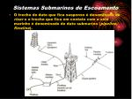 sistemas submarinos de escoamento5