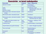 koenzimler ve temel reaksiyonlar