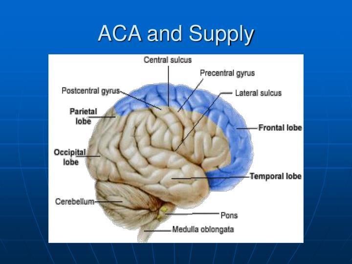 ACA and Supply