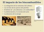 el impacto de los biocombustibles