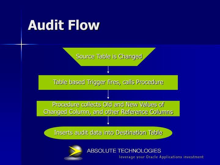 Audit Flow