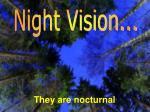 they are nocturnal