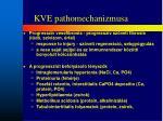kve pathomechanizmusa
