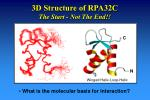 3d structure of rpa32c the start not the end